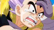 Bills kneed gotenks in the stomach3