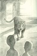 Jake and Marco meet the tiger at the gardens book 1 The Invasion Japanese illustration