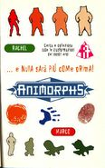Animorphs 9 the secret italian stickers adesivi