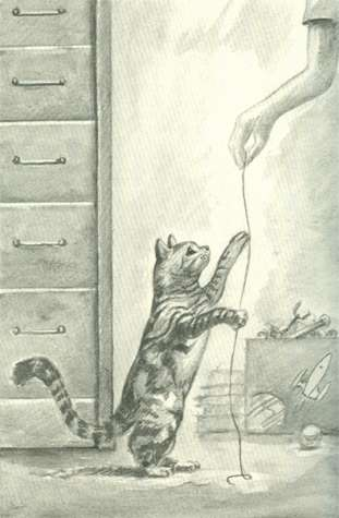 File:Tobias morphed as dude cat string book 1 the invasion japanese illustration.jpg