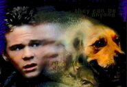 Shawn ashmore on the cover of vhs part 1 the invasion series