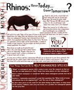 Animorphs Alliance Flash issue 6 morph of the month rhinos