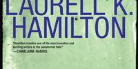 Bullet (novel)