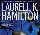 Affliction (novel)