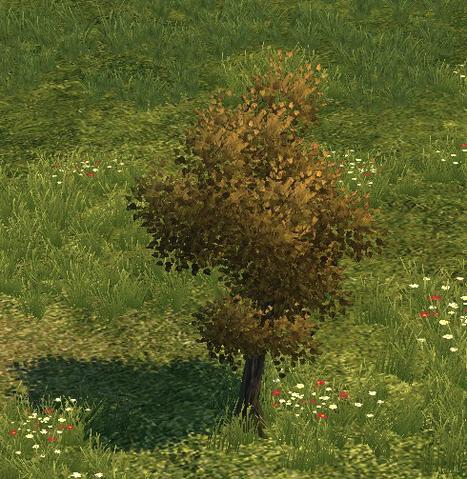 File:Tree big.png