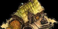 Cider farm