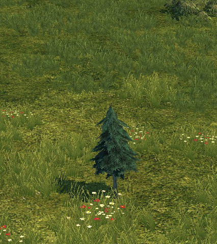 File:Tree first.png