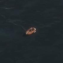 LifeboatA