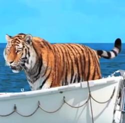 Tiger otimethou42