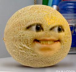 CantaloupeSam