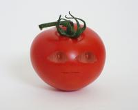 Tomatokillingspree