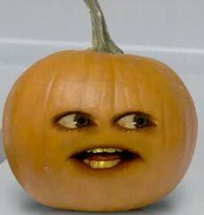 AO Gourd