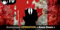 Operation Anon Down