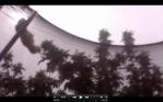 Screen Shot 2016-07-28 at 2.28.16 PM