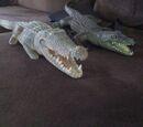 Blue Crocodile and Green Crocodile