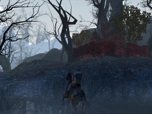 File:Frostswamp 3.jpg