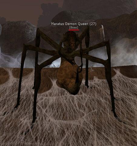 File:Maratus Demon Queen.jpg