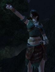 Vanir Acolyte Armor Set 1 (female)
