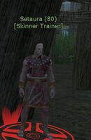 Skinning Trainer