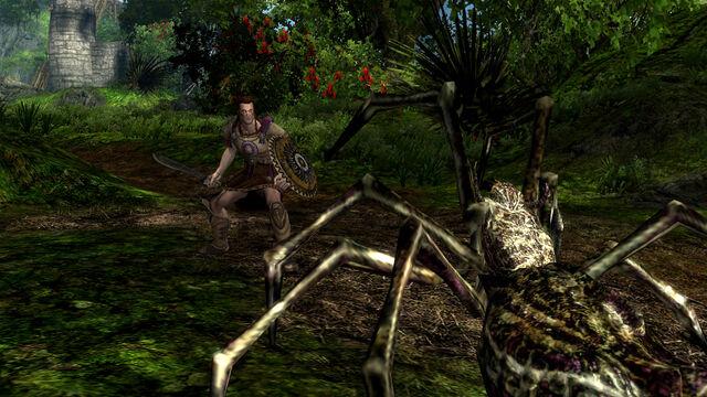 File:Spider fight.jpg