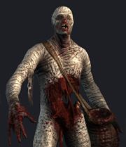 File:Vengeful mummy bestiary.jpg