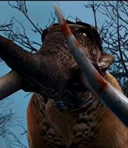 Mammoth img