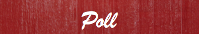 File:Poll Home Header.png