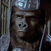 File:Userbox gorilla.jpg