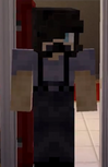 Zane acting as Aphmau's Dad