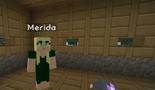 Minecraft Diaries Season 1 Episode 16 Screenshot1