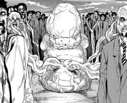 39 The Bokor fetus