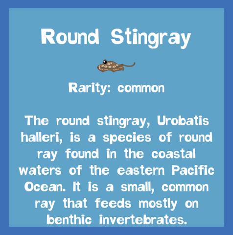 File:Fish2 Round Stingray.png