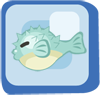 File:Fish Blue Puffer.png