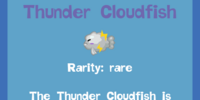 Thunder Cloudfish