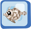 File:Fish Matted Filefish.png