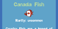 Canada Fish