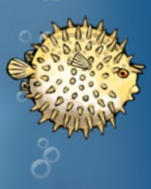 Fish enemy pufferfish puffed