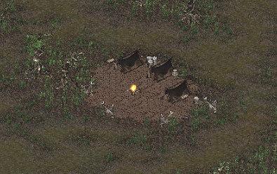 Mi-poachers-camp