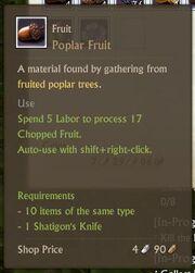 Poplar Fruit