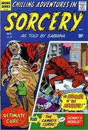 Chilling Adventures In Sorcery As Told By Sabrina Vol 1 2