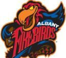 Albany Firebirds