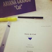 Sam & Cat Script Episode 101 - Pilot