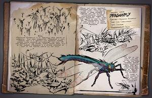 29 - Dragonfly