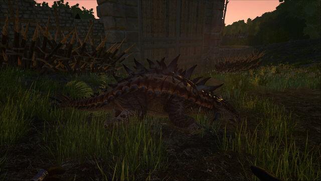 File:ARK-Ankylosaurus Screenshot 005.jpg