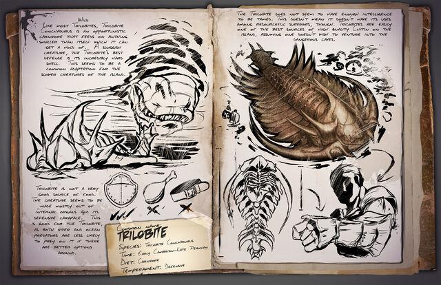 File:36 - Trilobite.jpg
