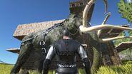 Mammoth-Saddle