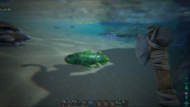 File:ARK-Coelacanth Screenshot 002.jpg