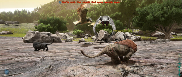 File:ARK-Argentavis and Sabertooth Screenshot 002.jpg