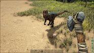 ARK-Dilophosaurus Screenshot 008