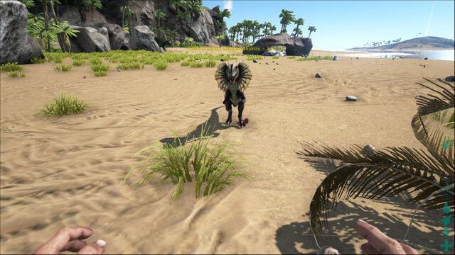 File:ARK-Dilophosaurus Screenshot 007.jpg